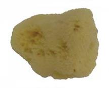 #A149158 – Natural Sponge Silk – 2-3 Inch